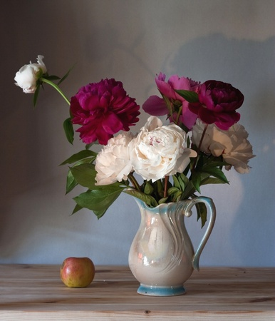 arrange: Beautiful peonies Stock Photo
