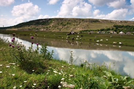 oxbow: picturesque landscape with river