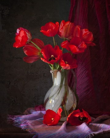 red tulips in a vase Stock Photo - 11544494