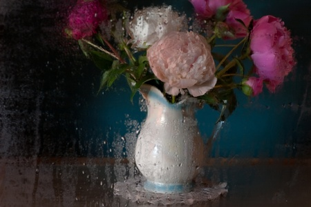 Still Life with Peonies photo