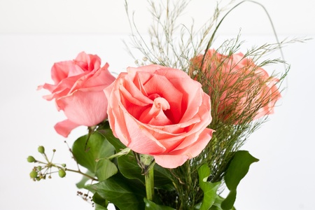 bouquet of red roses isolated on white background Stock Photo - 12075720
