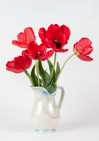small group of objects: tulips in a vase on white background isolated