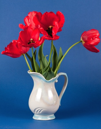 tulips in a vase  photo