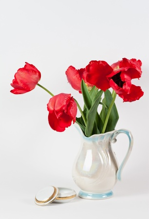 tulips in a vase on white background isolated photo