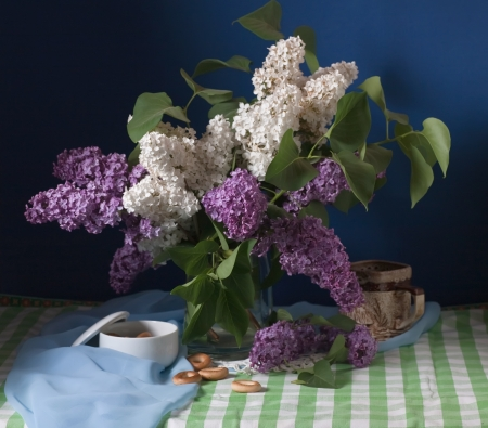 still life with lilac flowers