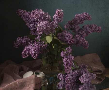still life with lilac flowers photo