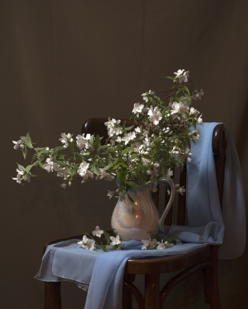 still life with flowers of jasmine photo