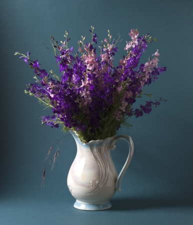 Still life with wild flowers on the background Stock Photo - 17589341