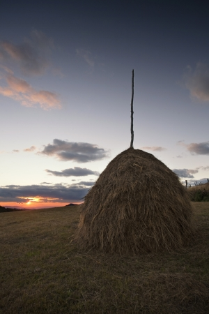 Field with haystack on mountains meadow Stock Photo - 17682902