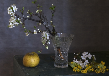 Spring flowering branches in a vase photo