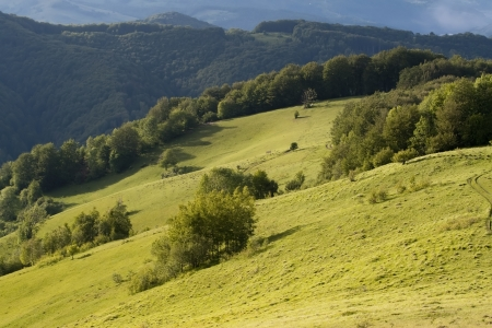 Colorful summer landscape in the Carpathian photo