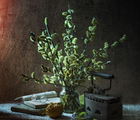 Still-life with a magnificent bouquet from branches of a blossoming willow photo