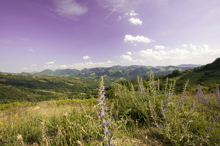 summer rural mountain landscape in Romania photo