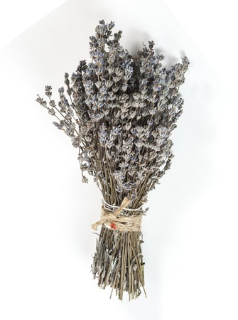 bunch of dried lavender isolated on white background photo