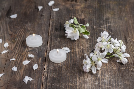 apple blossoms on old wooden table Stock Photo