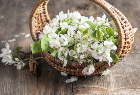 flourished: March flourished in basket on old wooden table