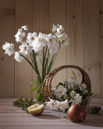 daffodils: white daffodils Stock Photo