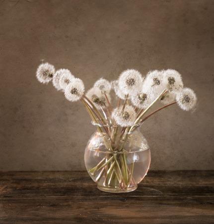 whit: still life whit dandelions