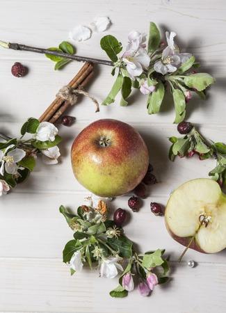 Bacground: apple blossom on bacground Stock Photo