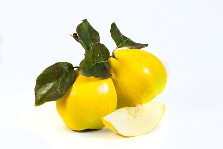 whitw: quinse isolated on whitw backgraund Stock Photo