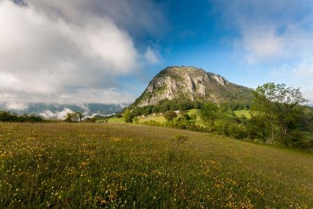 Romanias Carpathian mountains in summer