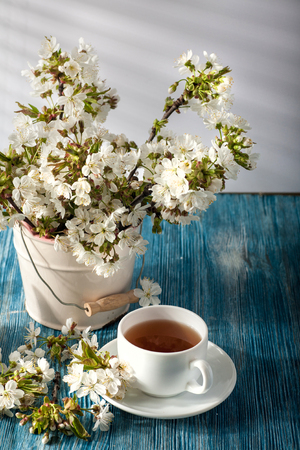 Still life with cherry blossom and green tea in the morning light.