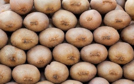 fresh kivi fruits plased in farm market