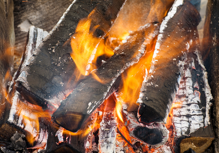 snug: Fire flames background. Firewood is burning in the grill in the open air.