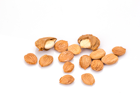 apricot kernels: apricot kernel isolated on white background. Vegetarian food