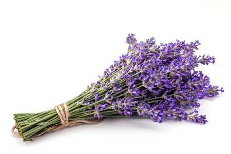 Bunch of lavander isolated on white background.