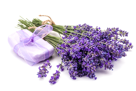 Lavander and soap isolated on white background. Stock Photo