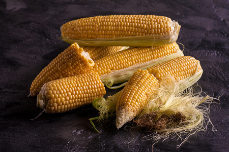 Sweet maize on a dark vintage background