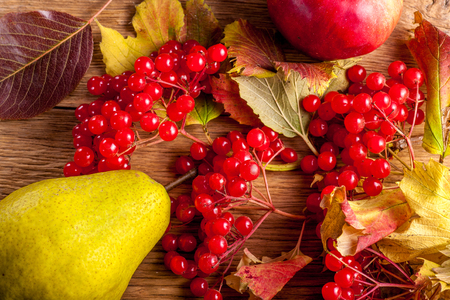 Viburnum whit fruits on old wooden background, Natural remedy.