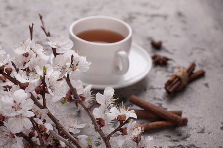 Cup of tea with apricot flowers.