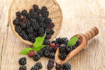 Blackberries in bowl on wooden rustic table. Natural berries.