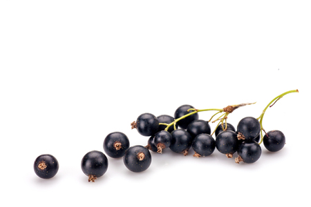 Blackcurrant in closeup isolated on white background. 版權商用圖片