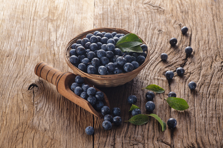 Fresh sloes in bowl on wooden table. Natural remedy