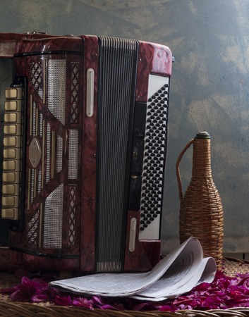 Classic musical instrument an accordion in red color Фото со стока