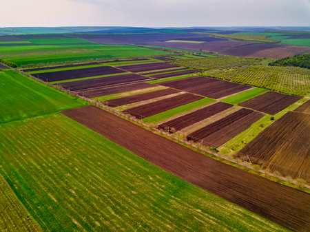 Sunset light. Flight over cultivating field in the spring. Moldova Republic of.