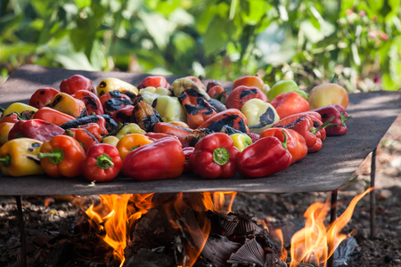 View from above of colorful red, green and yellow stuffed veggy savory bell peppers grilling on a BBQ with glowing hot coals