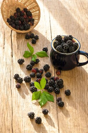 Blackberries in blue cup on the wooden table. Rustic style.
