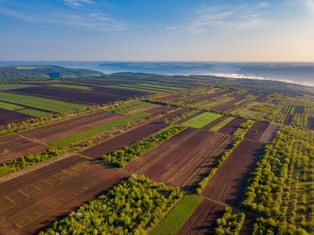 Flight over cultivating field in the spring at sunrise. Moldova Republic of.