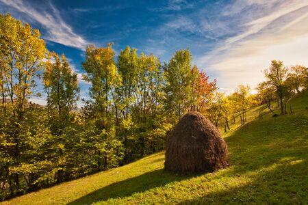 The mountain autumn landscape with colorful forest. Carpatian mountains, transilvania. Banco de Imagens