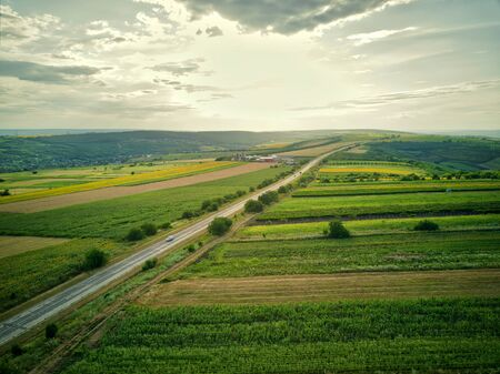 Aerial view of the green and yellow rice field, grew in different pattern at sunset. Highway.