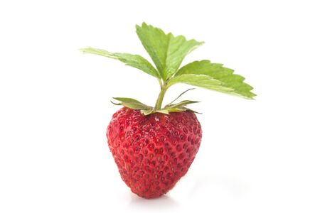 Strawberry whit leaves isolated on a white background. Fresh ripe single strawbery on white