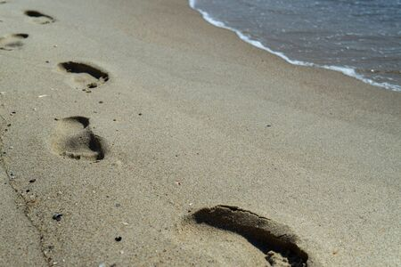 footprints of a person in the wet sand of a beach Imagens