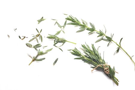 Fresh green rosemary isolated on white, top view. Aromatic herb. Standard-Bild