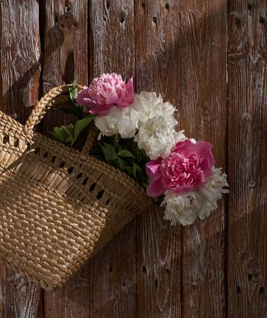 Flowers of pink red and white peonies in wicker basket on wooden table against wooden background