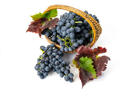Grapes in a wooden basket. White background Standard-Bild - 151034009