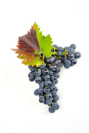 Fresh bunch of red wine on a white background